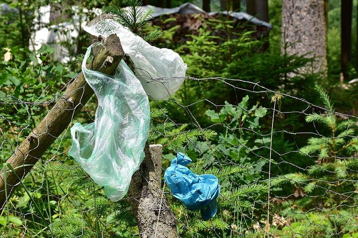 脱プラスチックとプラスチックの活用