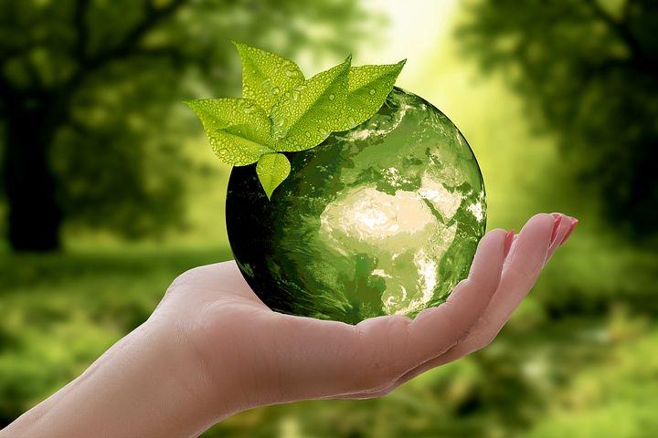 プラスチックリサイクルの実情