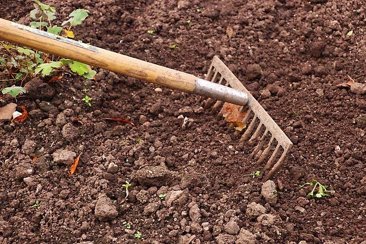 有機農家の取り組み
